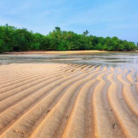 Patuno Beach, wangi-wangi island by Asep Dedo - Landscapes Beaches