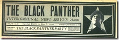BLACK PANTHERS342
