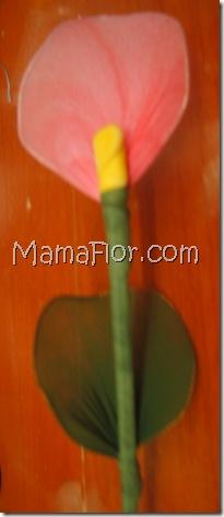mamaflor-5399