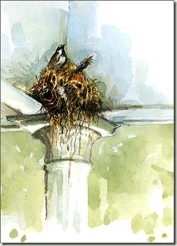 nest sat