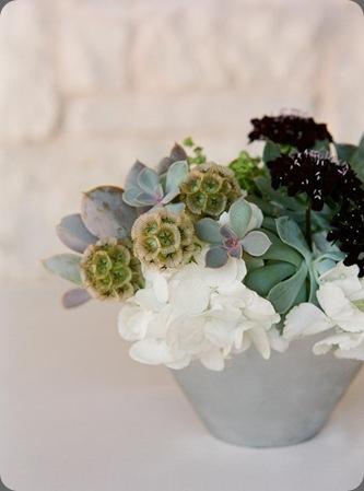 ChelleAdam-0707w rosehip happenings