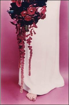 pink roses robbie honey