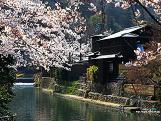 嵐山公園@京都