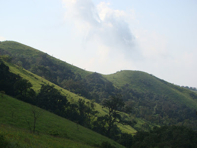 A view of Kodachadri hill