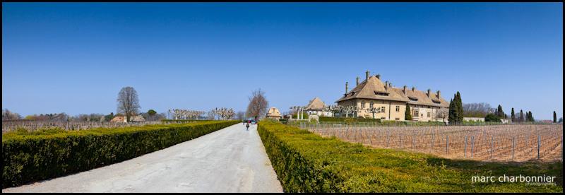 Chateau ripaille-pano-1.jpg