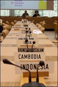 organisation mondiale du commerce-5.jpg