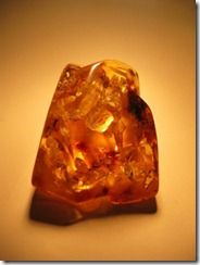 LithuaniaAmber