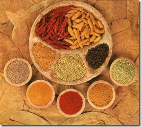 indian_spices1
