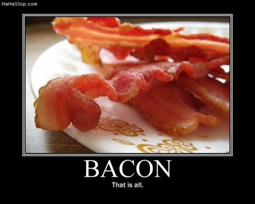photo of a plate of bacon...enough said