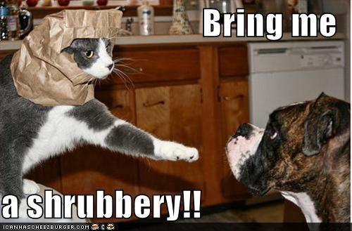 photo of a cat saying to a dog bring me a shrubbery