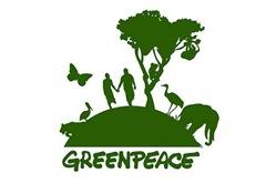greenpeace-Construcción sostenible