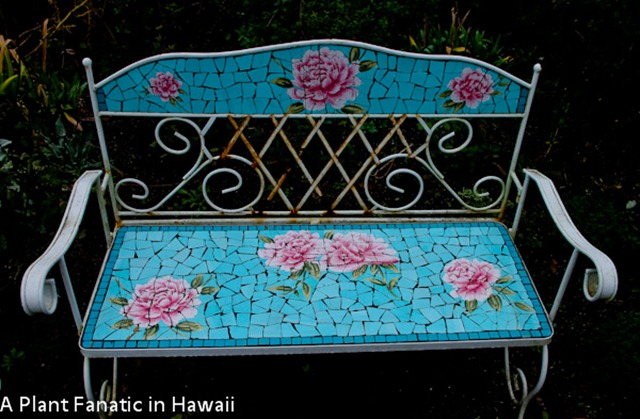 Strange A Plant Fanatic In Hawaii What A Sweet Place Machost Co Dining Chair Design Ideas Machostcouk