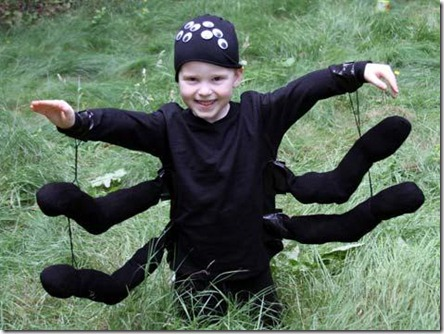 spider-costume-craft-photo-475x357-hmann-16_476x357