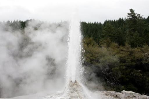 lady knox geyser w wai-o-tapu