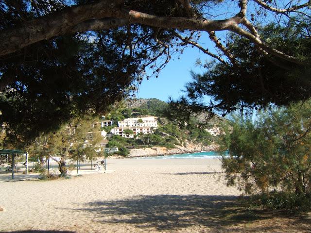 Strand in Canyamel/ Cala Ratjada, Mallorca