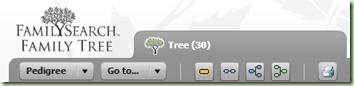 来自Familysearch FamilyTree项目的细节