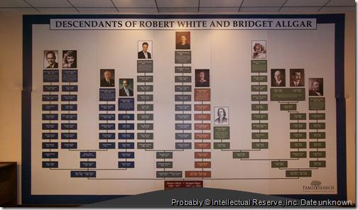 Robert White和Bridget Allgar的后代