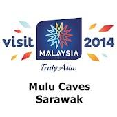Mulu Caves, Sarawak - VMY2014