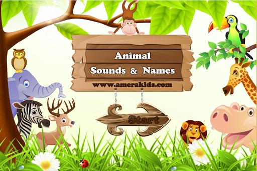 Animal Sounds And Names