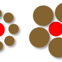 circulos iguales.jpg