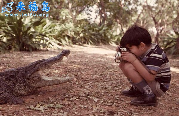 15 reasons why boys need strict parents - Boy taking close-up of a crocodile