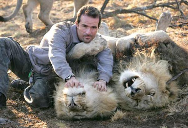 Ranger with lions