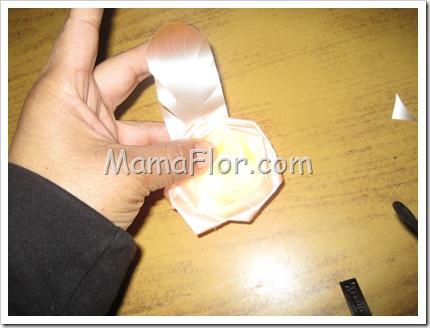 mamaflor-6789