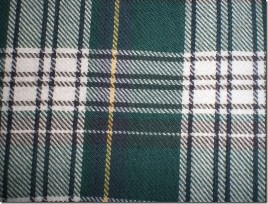 green_plaid_texture_2_by_contractcat-d38jg7u