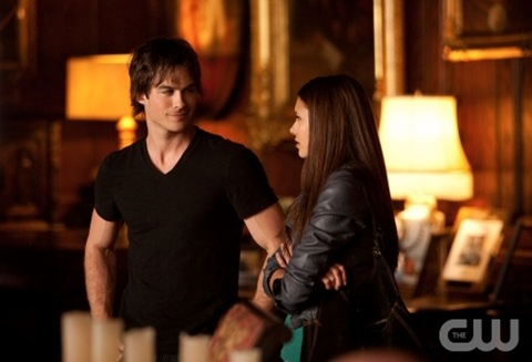 Ian Somerhalder is Damon and Nina Dobrev is Elena - Vampire Diaries