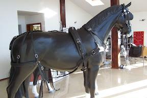Arden Dexter Wipe Clean BioThane Pairs Horse Harness