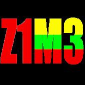 Z1M3 Converter