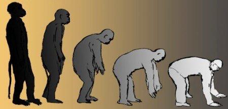 Darvina evolūcija teorija - zinātnisks fakts vai sociāla konstrukcija?