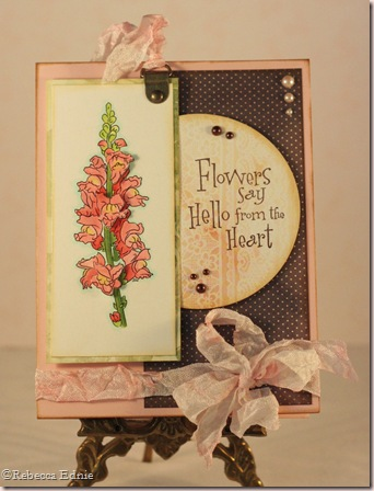 snapdragon shabby chic card