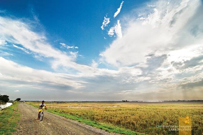 A Hot Clear Day Finally at the Cabanatuan Rice Fields