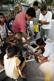 Freshly Caught Fishes Being Sold at the Shore of Tambobong Beach