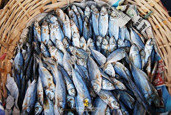 Smoked Fish Being Sold at Ortiz Wharf in Iloilo