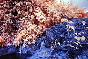 Wawa Waterfalls in Infrared Light
