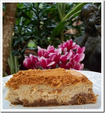 cheese cake speculoos morceau