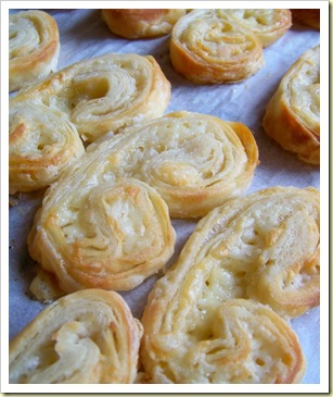 palmiers cantal 1