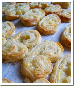 palmiers cantal 2