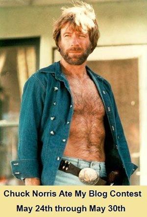 Chuck Norris Ate My Baby Chuck Norris Ate My Blog Contest