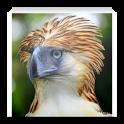 حيوانات جديدة صور icon