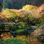 Taken at the Portland Japanese Gardens, By Brent Miller