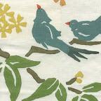 galbraithpaul_birds.jpg