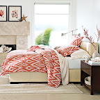 William Sonoma Home Ikat Bedding
