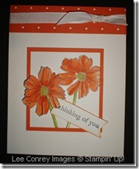 Fifth_Avenue_Floral_in_Tangerine_Tango_thumb[3]