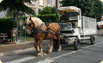 horse-and-cart-recycling