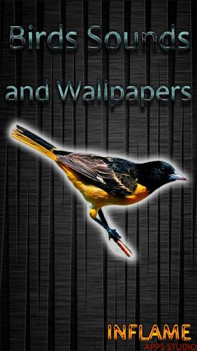 鳥が聞こえる&壁紙