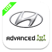 Hyundai Adv (Lite) for Torque