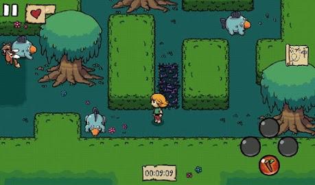 Ittle Dew Screenshot 21